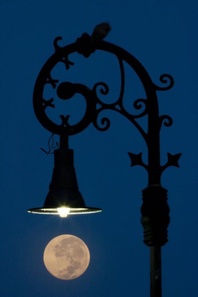 Luna colgando de un farol- Hugo Garrido