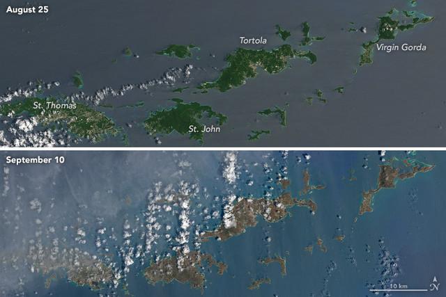 Las islas del Caribe ya no son verdes, después de que pasó el huracán Irma