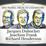 Criomicroscopía electrónica, para ver las moléculas en alta resolución: Nobel de Química 2017