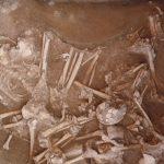 3,000 años duró la mezcla entre cazadores y agricultores en Europa