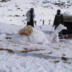 La vez que el desierto del Sahara se llenó de nieve: 18 de febrero de 1979