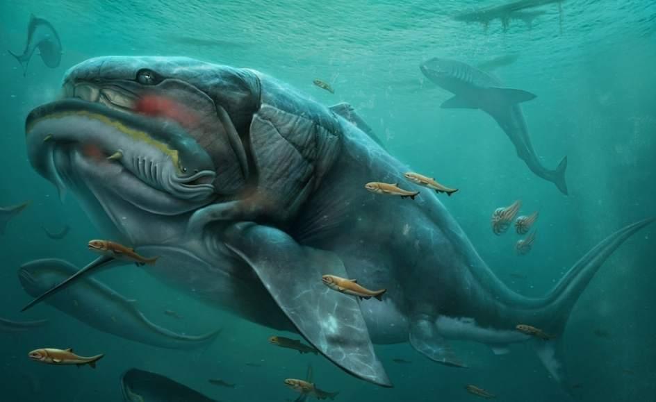 """El """"Dunkleosteus terrelli"""" uno de los primeros vertebrados en la tierra; existió hace 350 millones de años"""