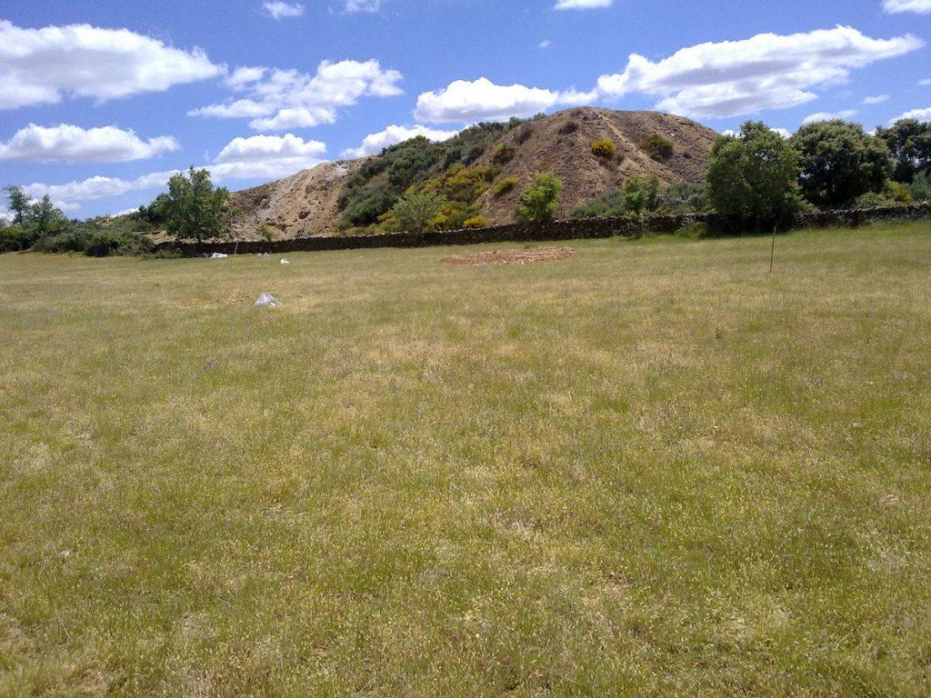 Zona de pastos junto a la mina de Barruecopardo (Salamanca), IRNASA