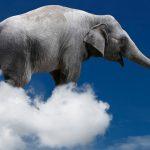 Ni en kilos ni en toneladas, el peso de las nubes se mide en elefantes: David Calle
