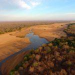La infraestructura humana, una de las principales razones del catastrófico declive de la biodiversidad