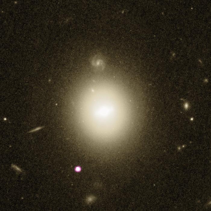 El mejor candidato de agujero negro de masa intermedia y la galaxia anfitriona- NASA, ESA, Hubble
