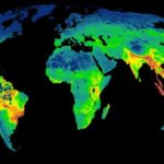 El mapa muestra las zonas calientes de la biodiversidad, donde las especies están más amenazadas- James Allan et al