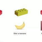 Cómo diseñamos organismos capaces de resolver problemas