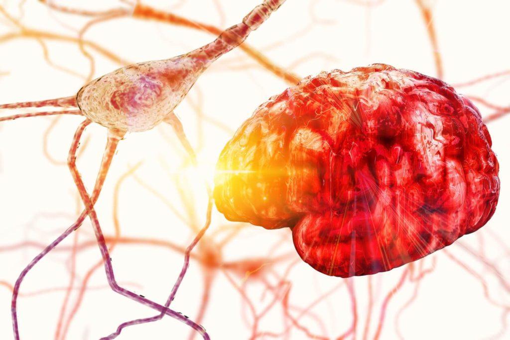 El daño que provoca el alcohol al cerebro se mantiene aún al volverse abstemio