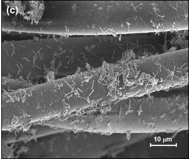 Tela de carbón activado y bacterias para eliminar bisfenoles del agua