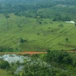 La Amazonia sufrió por cambio climático antes de la llegada de los europeos