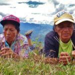 La desigualdad que sufren las mujeres rurales, se agrava con el cambio climático: ONU