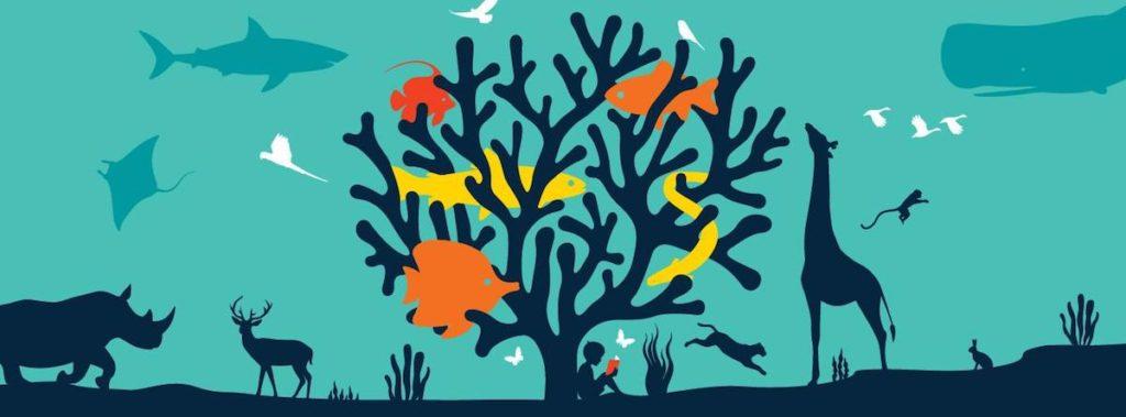 La vida silvestre también tiene valor ecológico, genético, social, económico, científico, educativo, cultural, recreativo y estético
